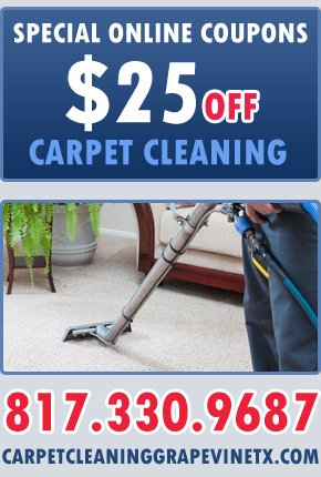 Online Coupons For Carpet Steam Cleaners